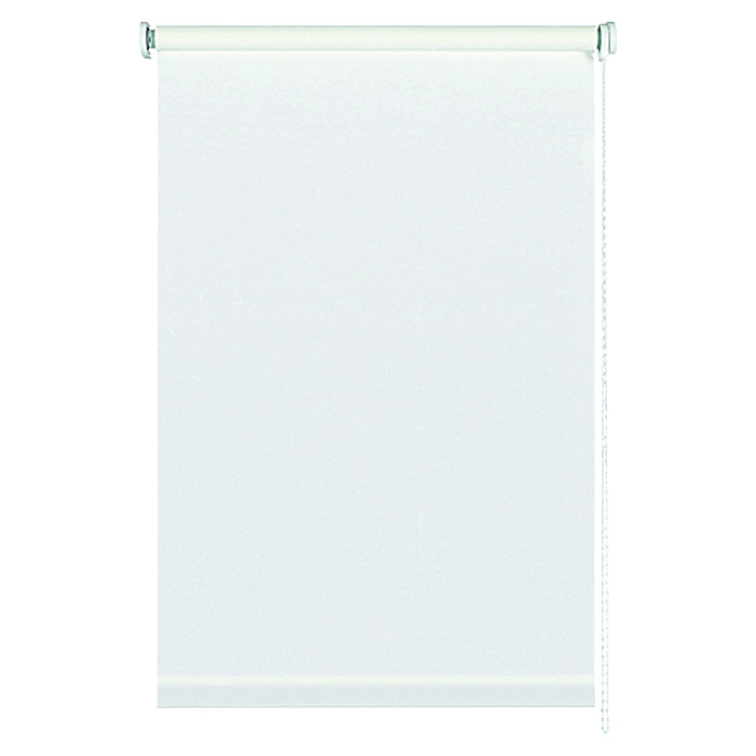 Basic Seitenzug-Rollo Weiss 92 x 175 cm