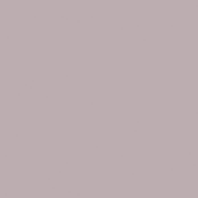 Schoner Wohnen Designfarben Wandfarbe 19 Bei Bauhaus Kaufen