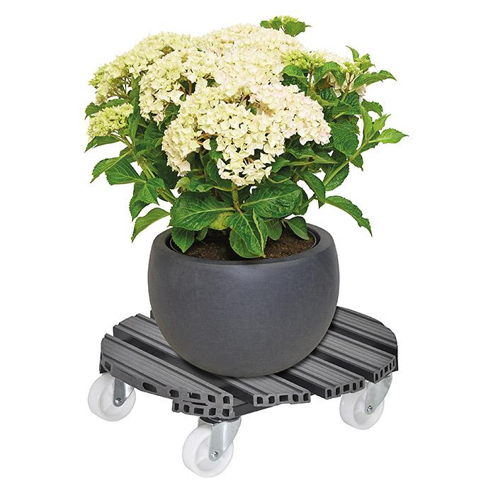 Gardol Pflanzenroller Multi WPC