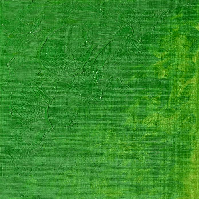 Winsor & Newton Winton Ölfarbe Hellgrün