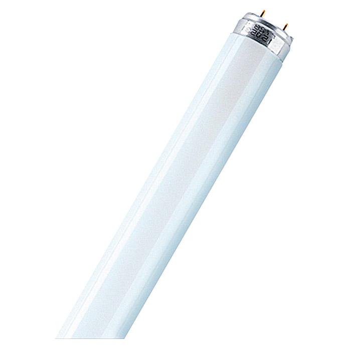 Tube fluorescent Warmwhite OSRAM