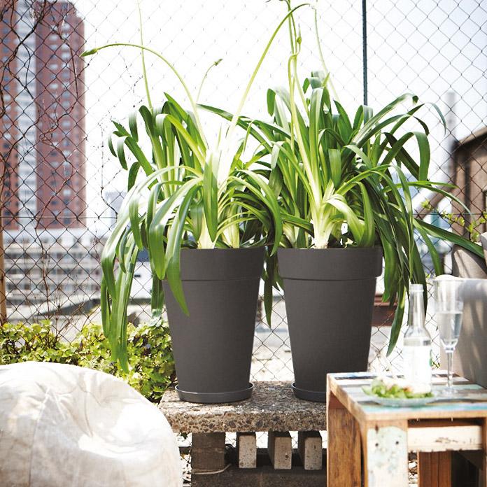 Bac à plantes Loft Urban elho anthracite