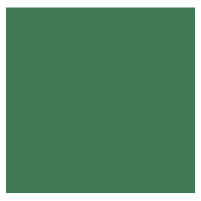 swingcolor laque colorée résine synthétique vert feuille satiné