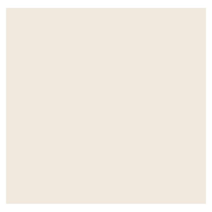swingcolor laque colorée résine synthétique blanc crème satiné
