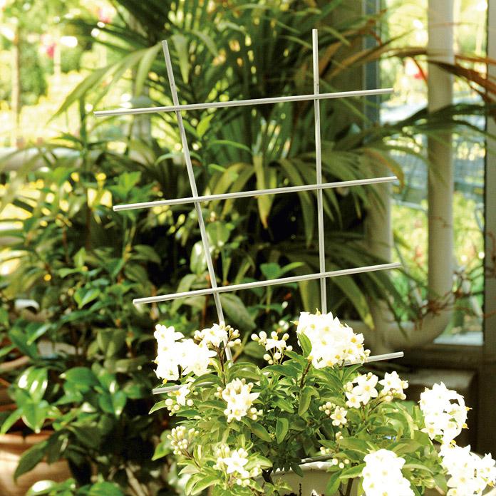 treillis pour plantes grimpantes gardol acheter chez bauhaus. Black Bedroom Furniture Sets. Home Design Ideas