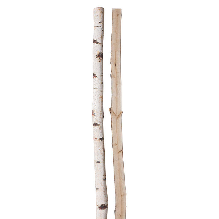 Birkenhalbstamm 200 cm
