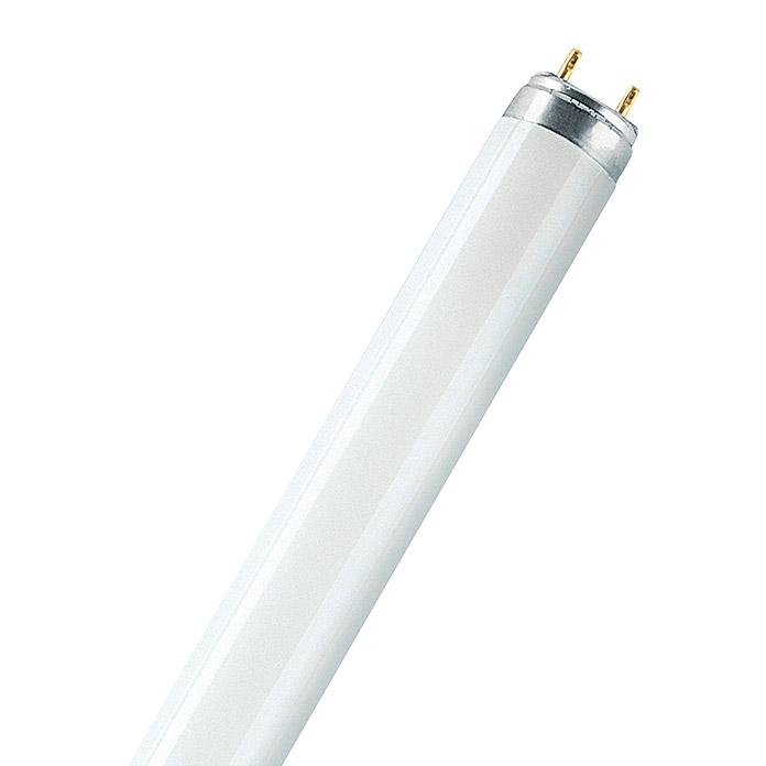 OSRAM Leuchtstoffröhre Daywhite