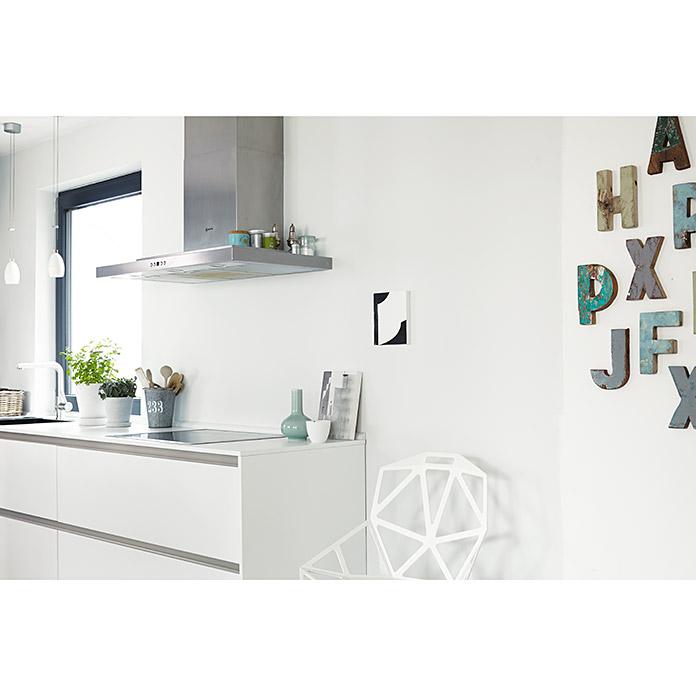 Alpina Finest Colours Wandfarbe Pale Grey Bei BAUHAUS Kaufen