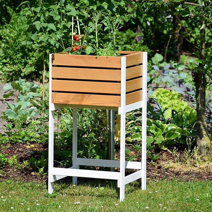hochbeet obstkiste bei bauhaus kaufen. Black Bedroom Furniture Sets. Home Design Ideas