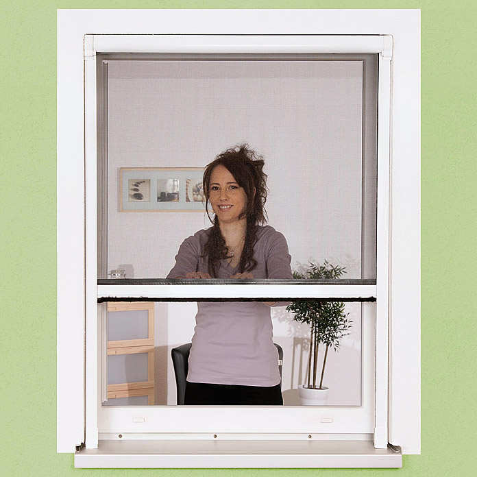 Easy life Insektenschutz-Fensterrollo Braun