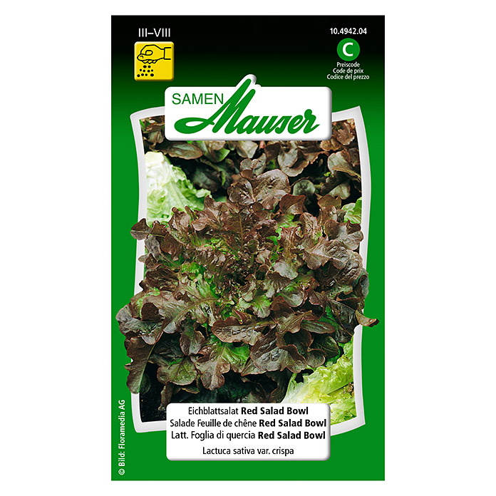 Salade Feuille de chêne Red Salad Bow