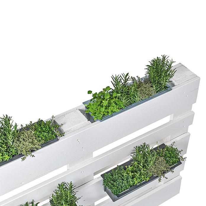 Bac à plantes geli pour palette Euro