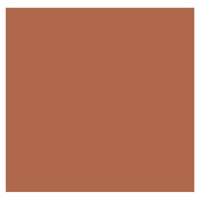 Colorant nuançable SCHÖNER WOHNEN terracotta