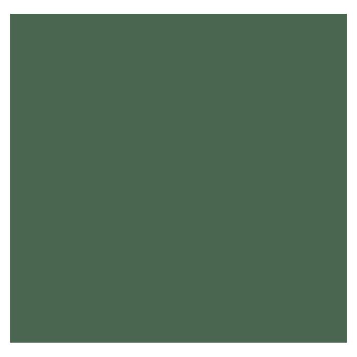 Schöner Wohnen Pittura A Colore Pieno O Sfumato Verde Foresta Acquistare Presso Bauhaus